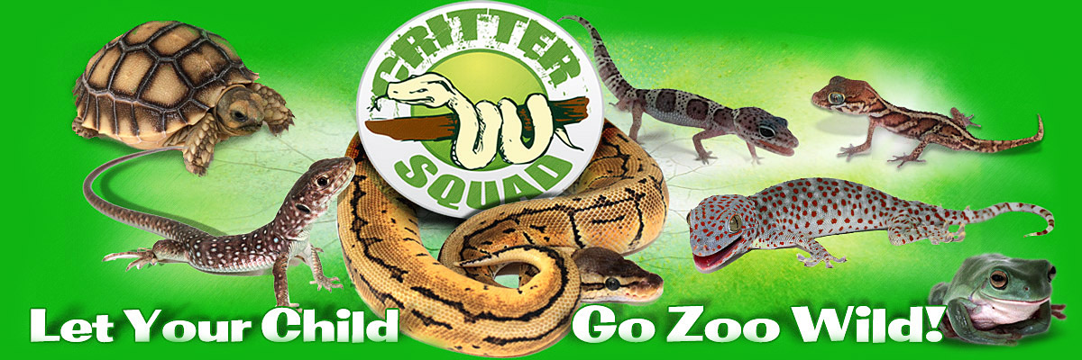 Reptile Parties Critter Squad