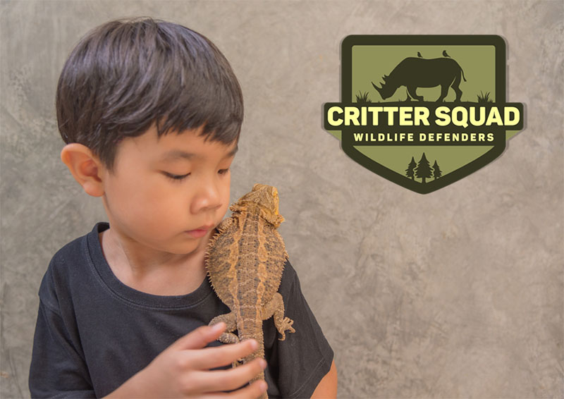 Make Your Animal Themed Party a Reptiles Party