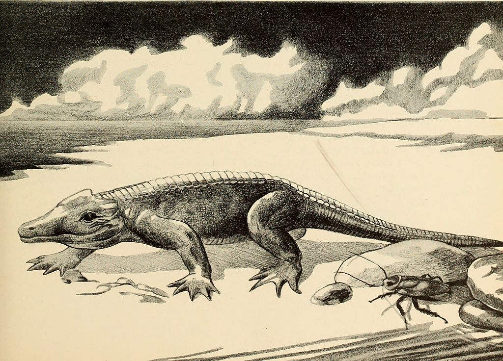 The dinosaur book the ruling reptiles and their relatives () ()