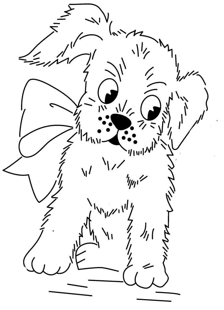 Mammal Coloring Pages C S W D