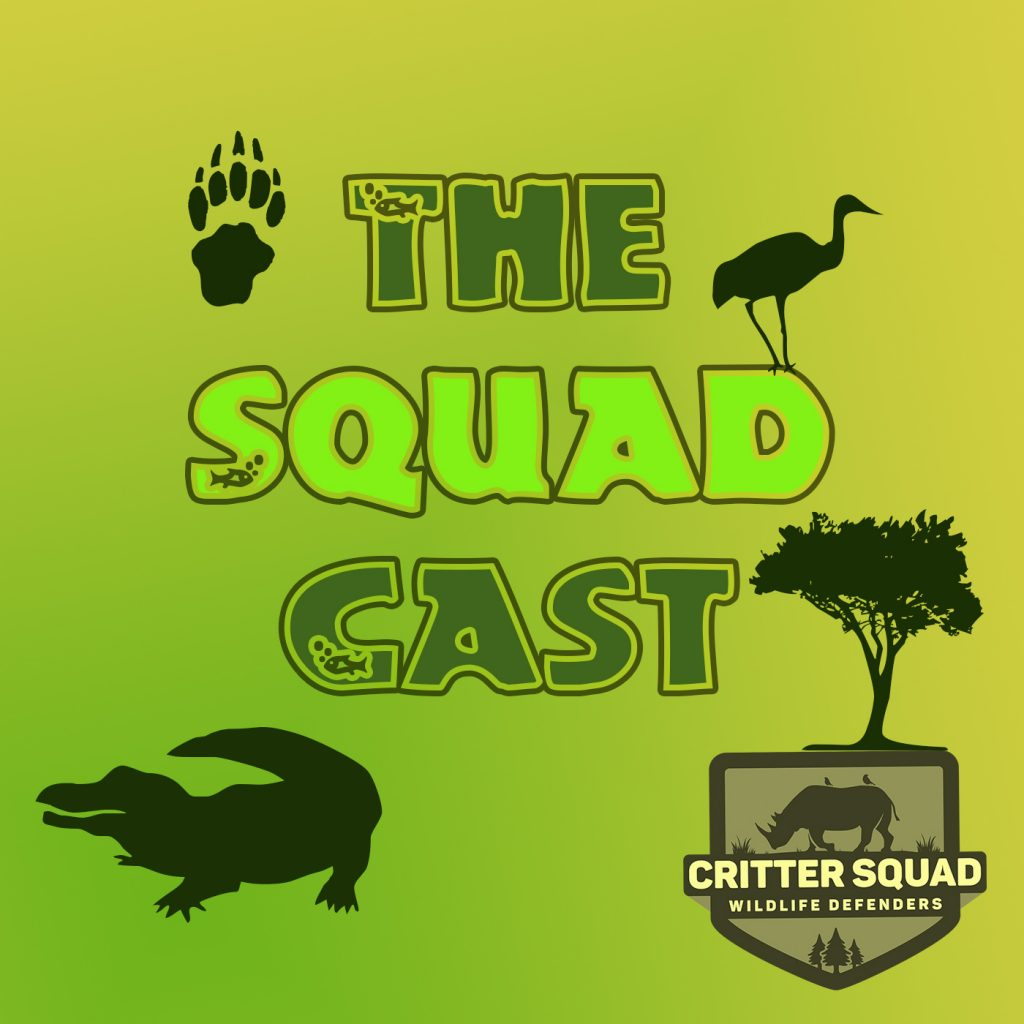 The Squad Cast Art